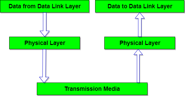 Physical Layer of    OSI       Reference       Model      Studytonight